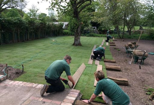 Garden Clearance and new Lawn, Swannington, Norfolk