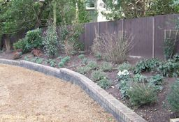 Border Design and Planting