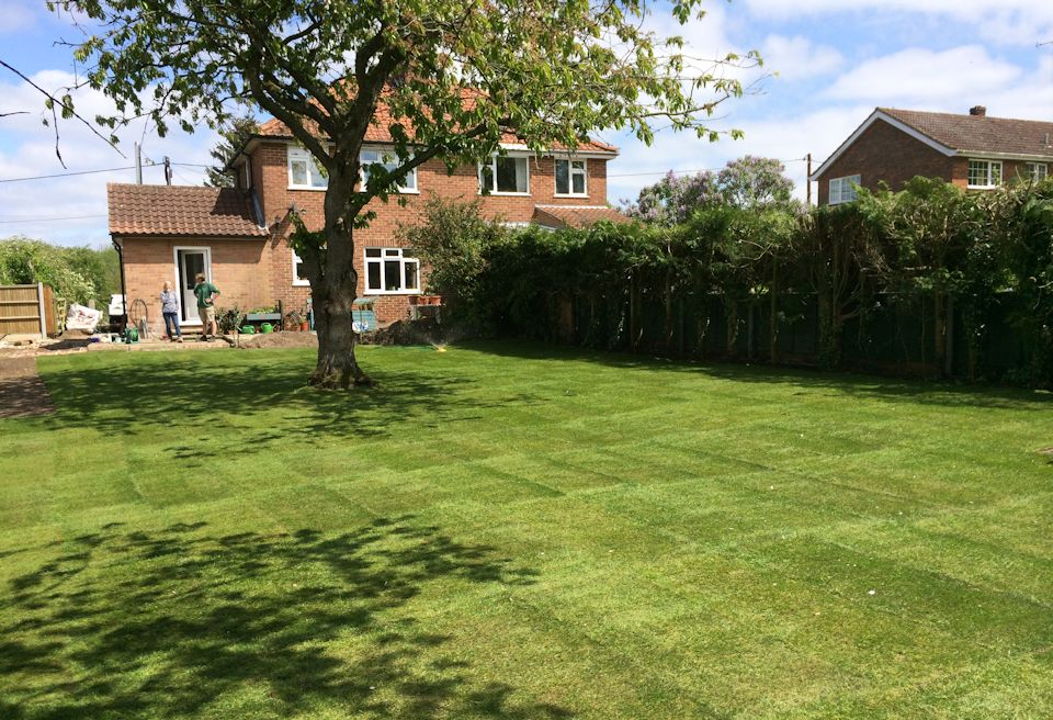 Garden Clearance and Lawn Swannington, Norfolk - Completed Lawn