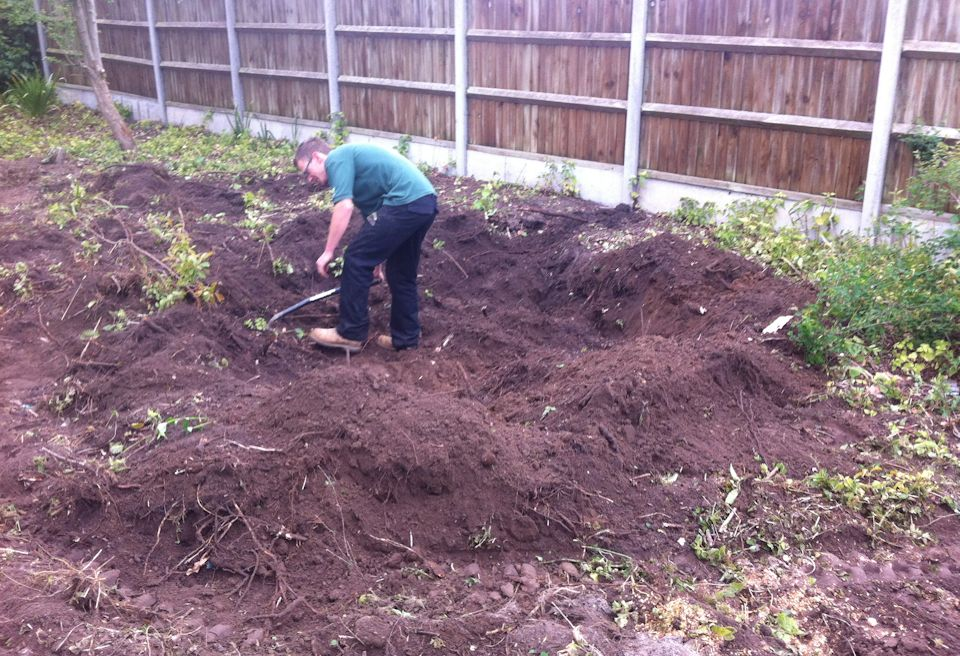 Garden Clearance and Lawn Swannington, Norfolk - Digging out tree roots