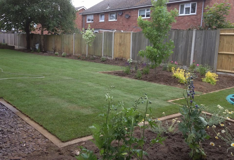 Garden Design Gorleston, Norfolk - Planting chosen for year round cover